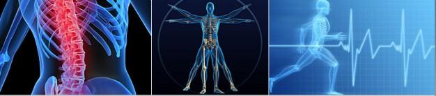 denver-musculoskeletal-pain-management